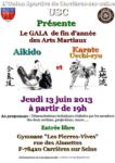 [Annonce] Gala des arts martiaux de Carrières sur Seine - 13 juin 2013