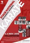 [Annonce] Stage des Experts japonais - 3 et 4 novembre 2018