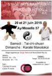 [Annonce] Stage de Taijiquan et Karate Makotokai - 20/21 juin 2015