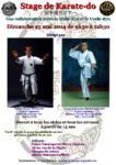 [Annonce] Stage de Karate Shito et Uechi-ryu - 25 mai 2014
