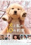 犬と私の10の約束 - Inu to Watashi no 10 no Yakusoku